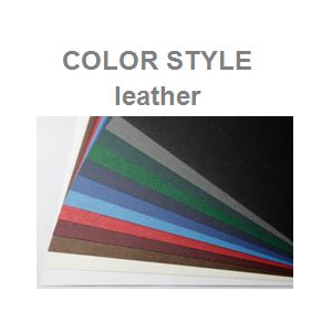Color Style Leather